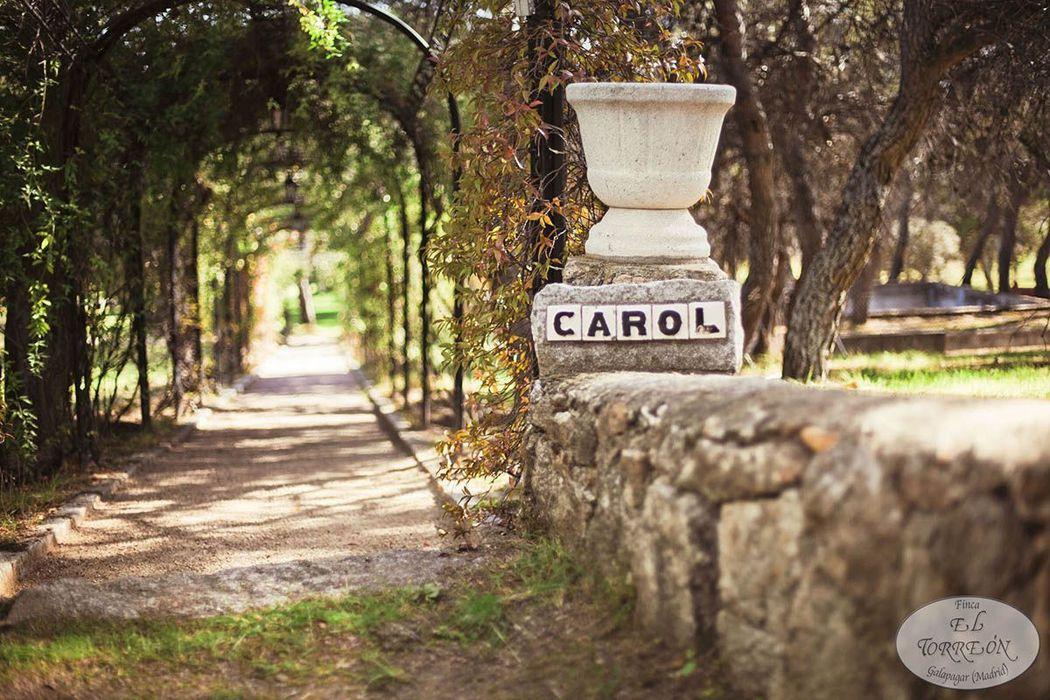 Camino Carol