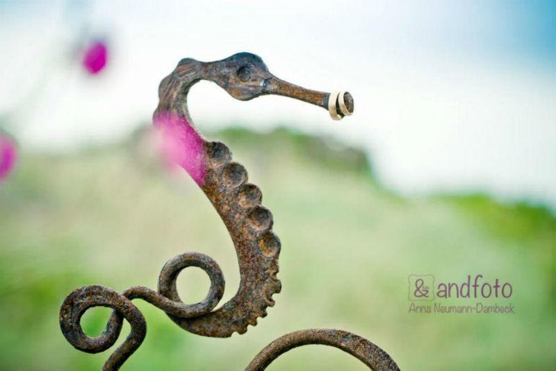 Beispiel: Detailfotografie, Foto: andfoto.