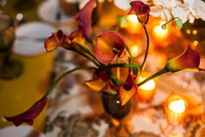 Flor e Forma