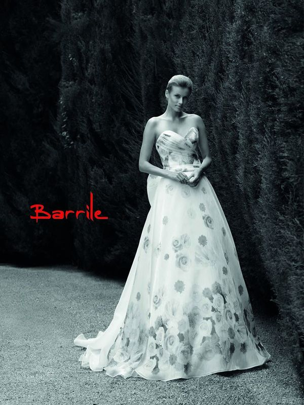 Barrile