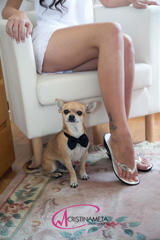 Sposa con cane fotografo Lecco