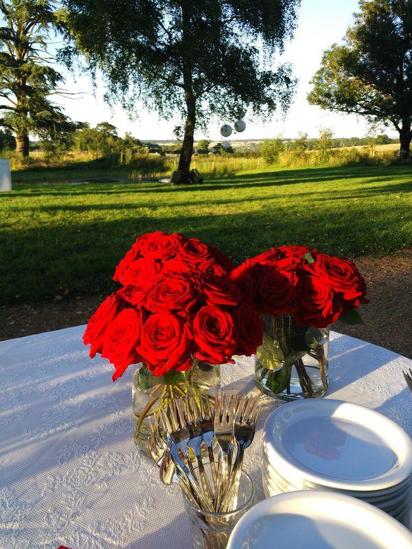 Prachtige rode rozen, perfect bij de rode sari van de bruid