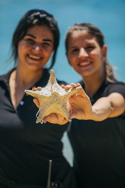 Estrela do Mar Assessoria