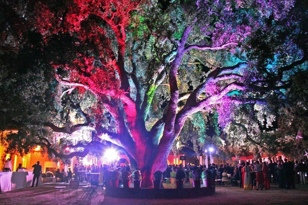 Luz y color para bodas siempre diferentes