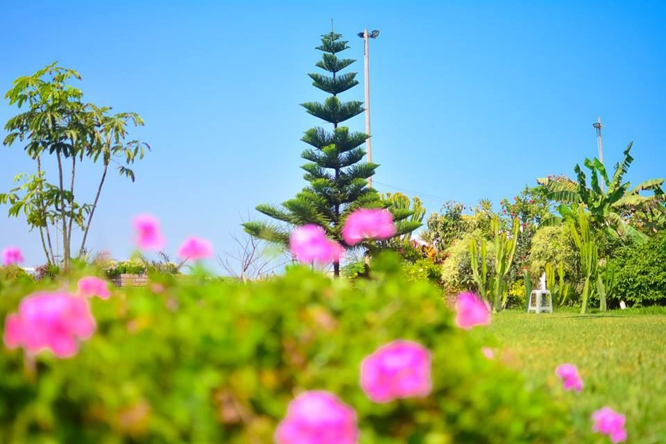 Casa De Campo Las Flores De Moche