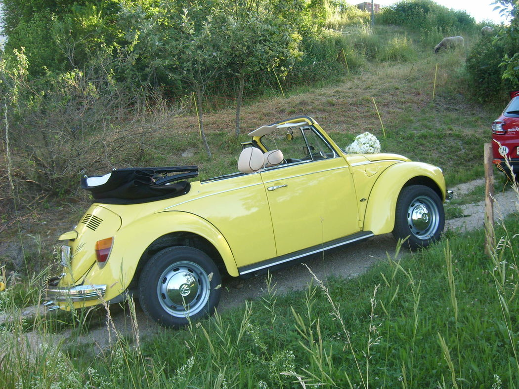 .oldtimer-all-inclusive.ch