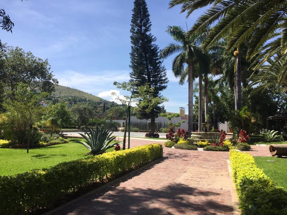 Jardín - Casa Don Luis - Oaxaca