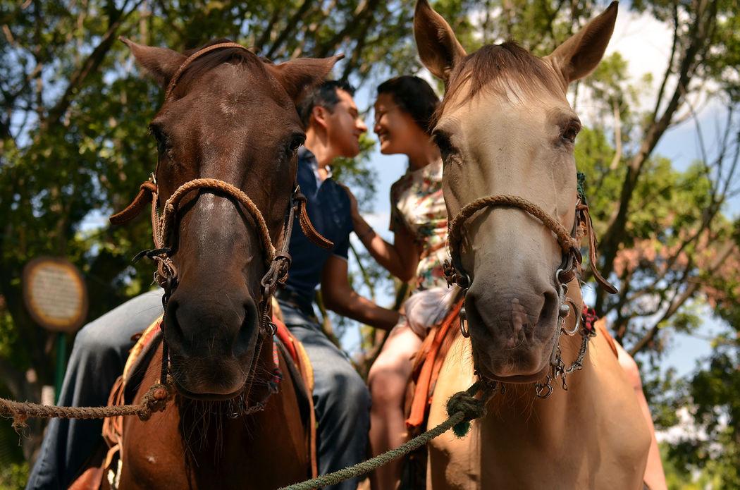 caballos y besos
