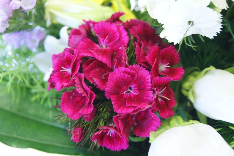 L'angolo del fiore