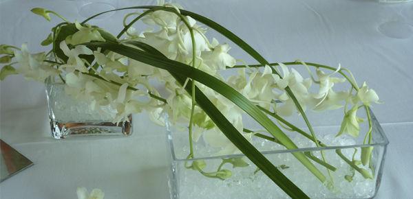 Decoración con orquideas en bases de crsital rectangulares de linia muy minimal y sutil. http://lafloreria.net