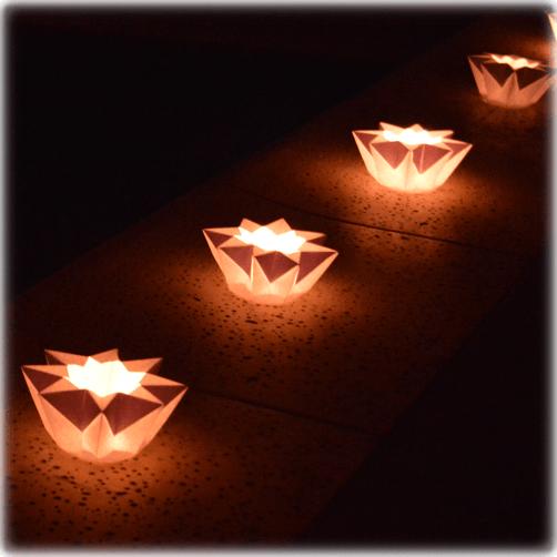 Luminarias en forma de estrella