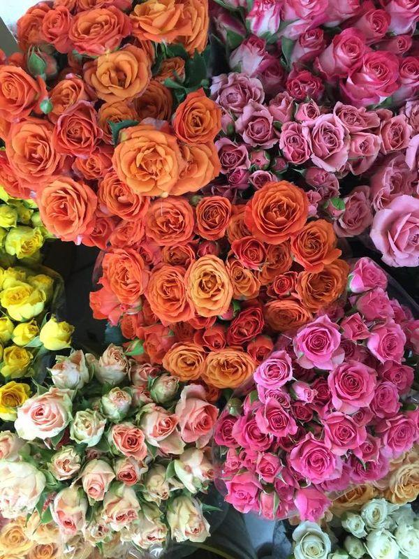 Maria Jose Diseñadora Floral