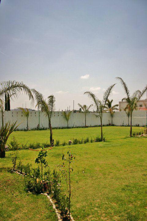Lomas De Zavaleta Jardín