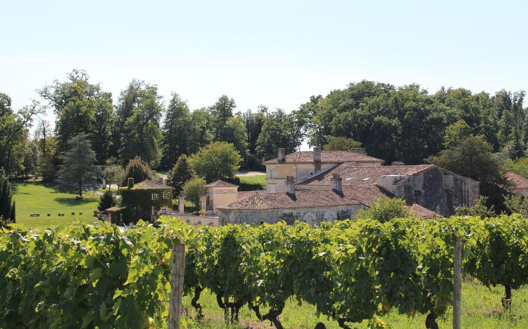 l'abbaye depuis les vignes