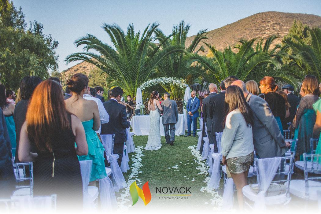 Novack Wedding Planner