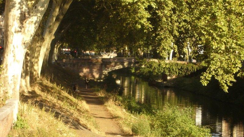Péniche La Timonerie (canal de Brienne)