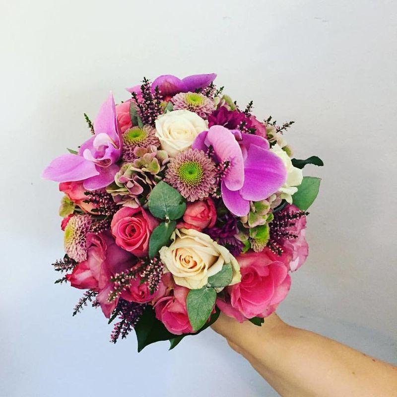 Floristik Schiefer