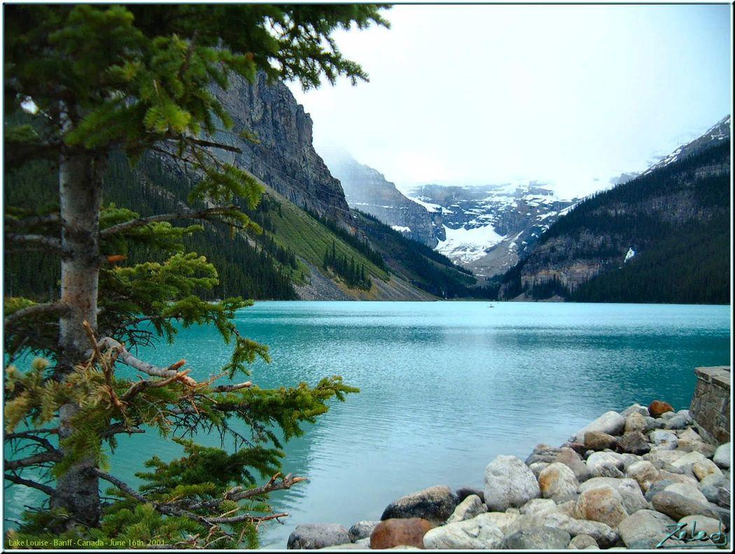 Canadá Oeste y glaciares 10 noches . Precio  por persona desde 765€.Solicita más informacion