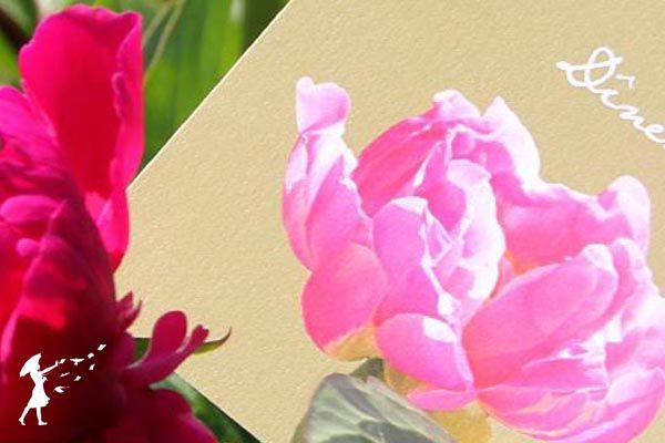 Collection Pivoine : Pour les amoureux des fleurs et des couleurs, la collection Pivoine saura vous satisfaire.