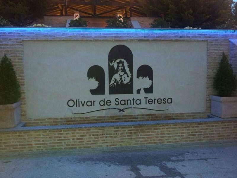 Olivar de Santa Teresa