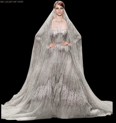 Elie Saab - Collection Eté 2014