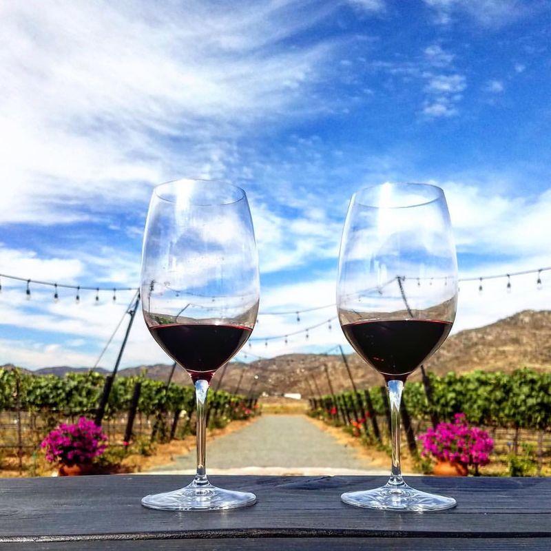 Trevista Vineyards