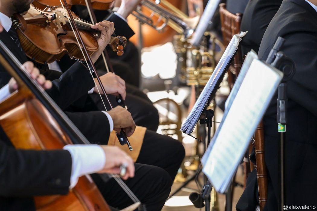 Quarteto de Cordas - Ricciere