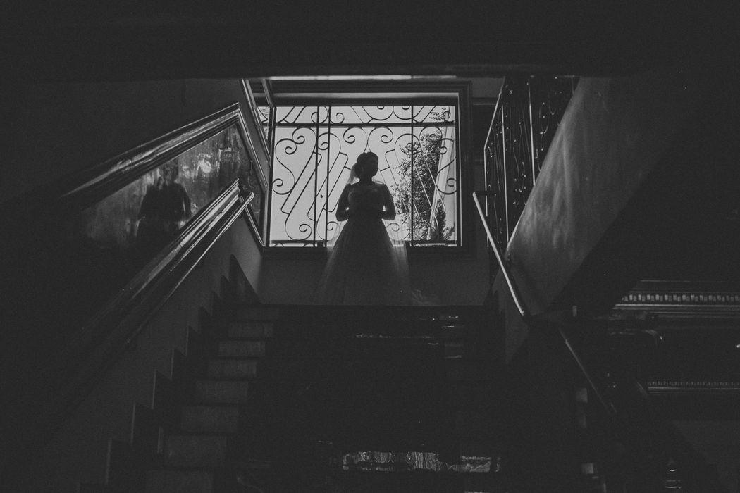 Brenda Nedlem Photography Δ