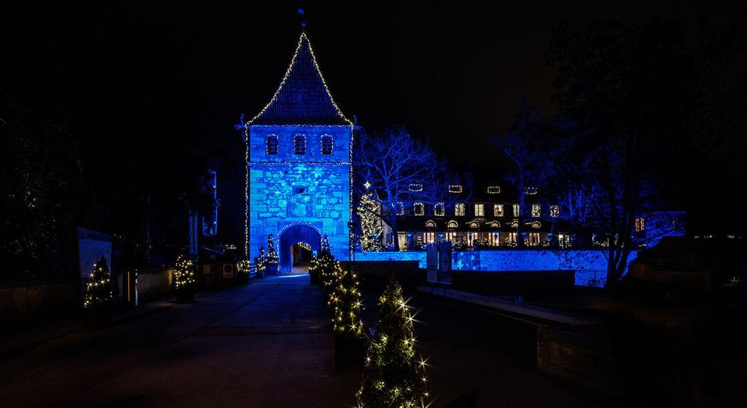 Schloss Laufen am Rheinfall