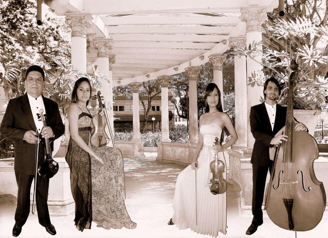 Orquestra Ibarra