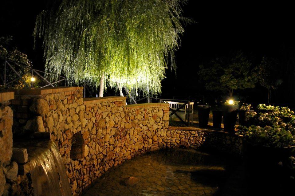 Hotel Kora Park