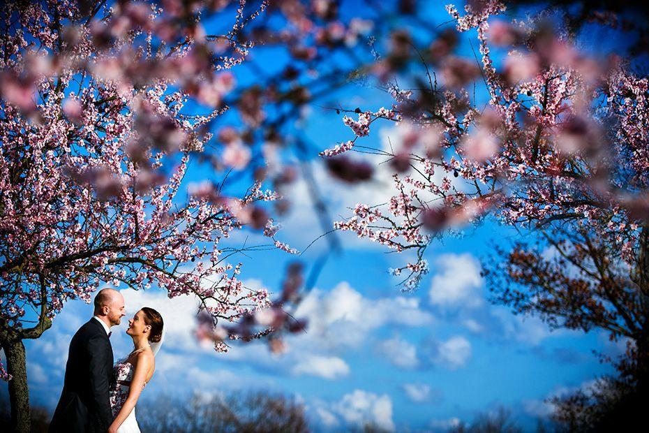 Als Hochzeitsfotograf im Rheingau, Hessen - RAMAN-PHOTOS