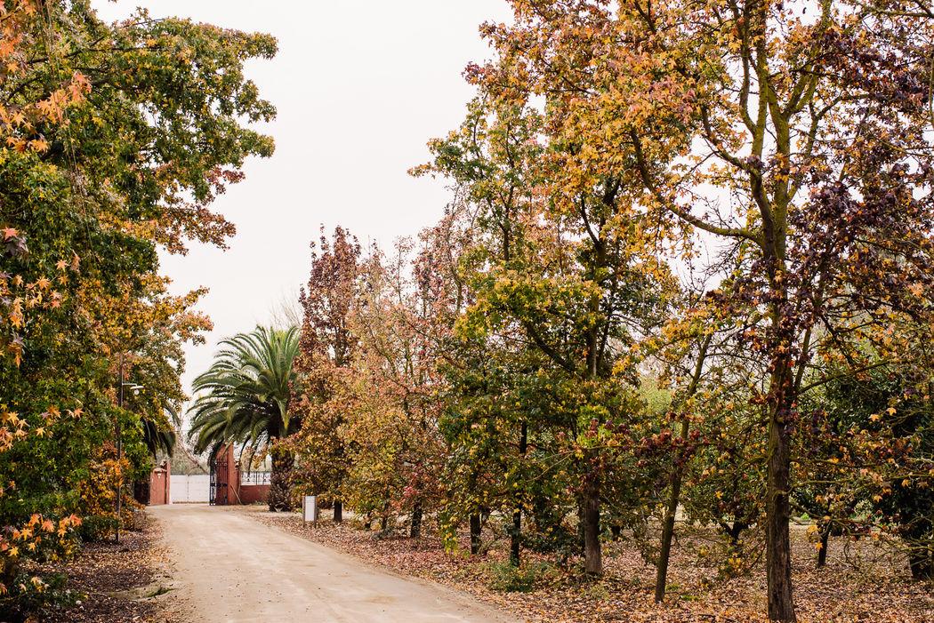Casa Landeta