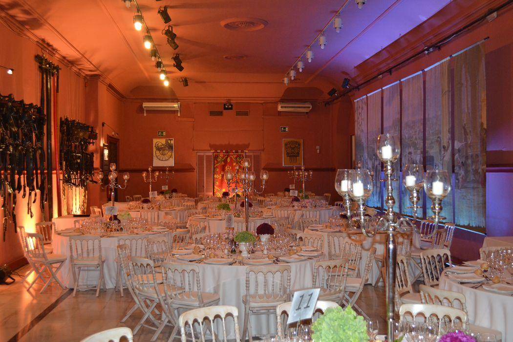 Detalle Iluminación Salón Rojo