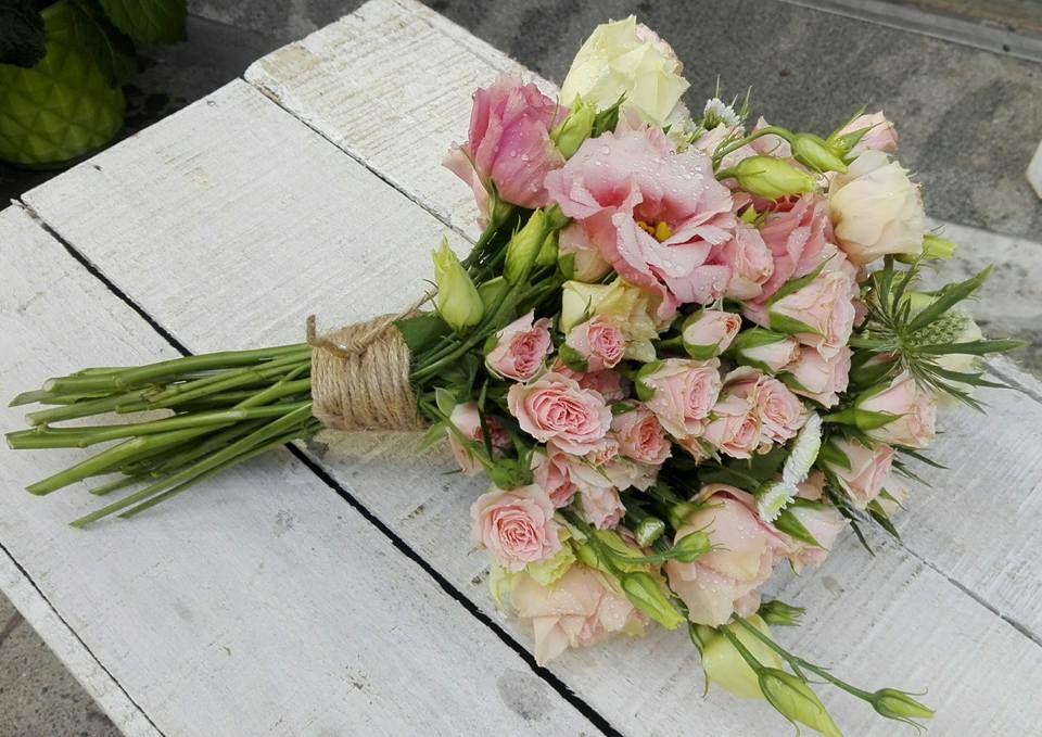 Retama flores