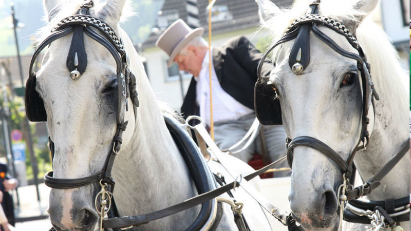 Beispiel: Pferdekutsche, Foto: Hotel zur Post.