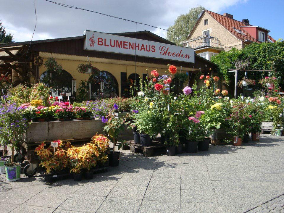 Blumenhaus Gloeden