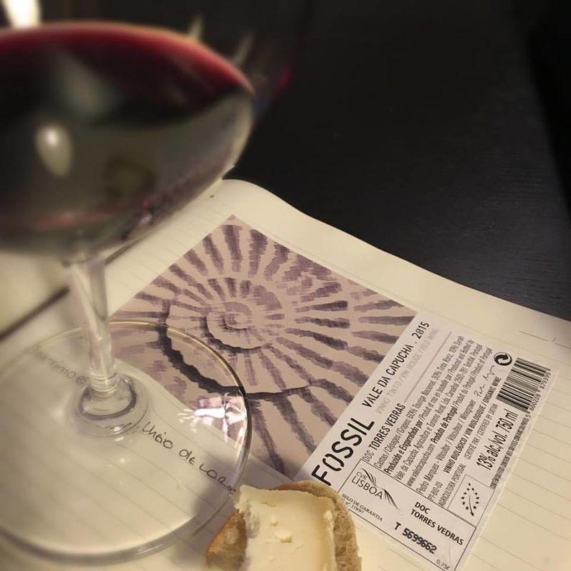 Estado Liquido - Wines & Spirits