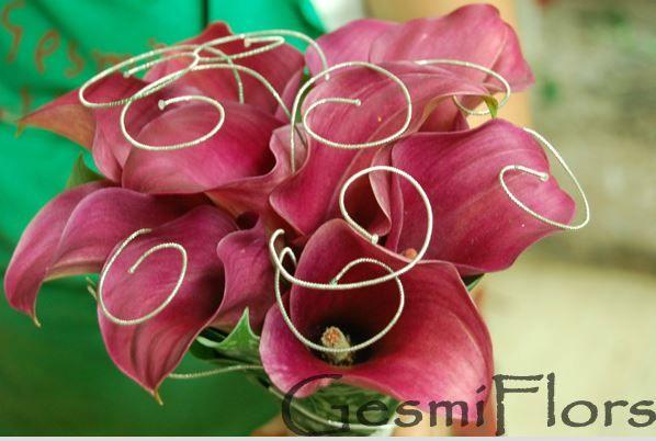 Gesmi Flors