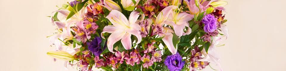 Ohana Fine Flowers