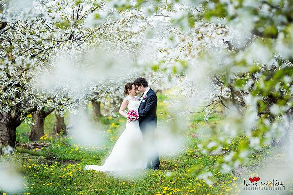 Brautpaarshooting, Kirschblüte, romantisch, stilvolle und edle Hochzeitsfotos, verliebt, romantisch, moderne Brautpaarbilder, exclusive Hochzeitsfotografie, exklusive Brautpaarbilder Schloss Kartzow, Hochzeitsfotografie Schloss Kartzow Potsdam