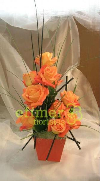 Efimer Floristas