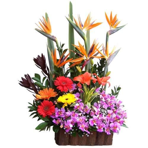 Arte en Flores