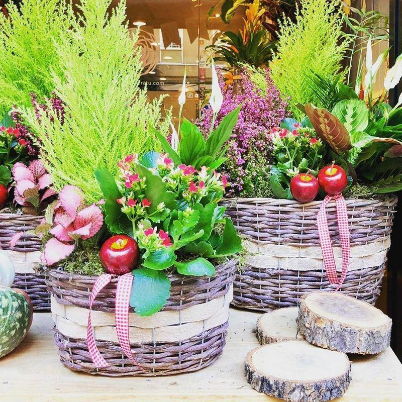 Flors per a tu
