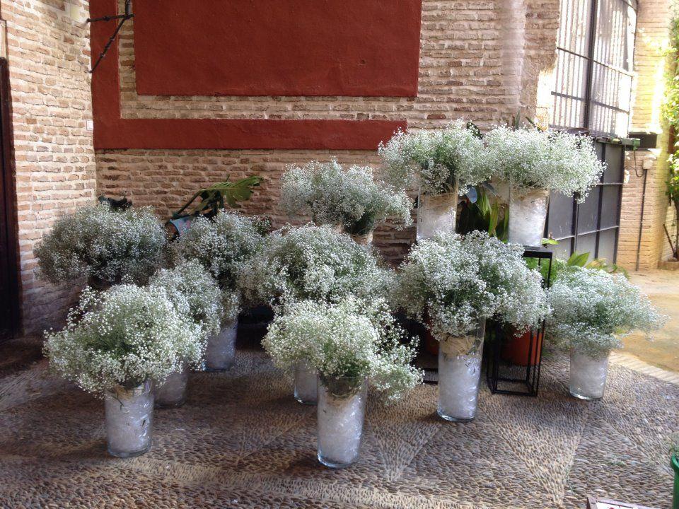 Floristería Enea