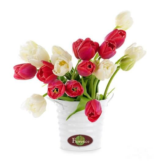 Fiorence Flores y Regalos