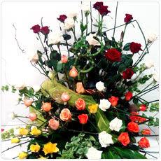 Florista.pt