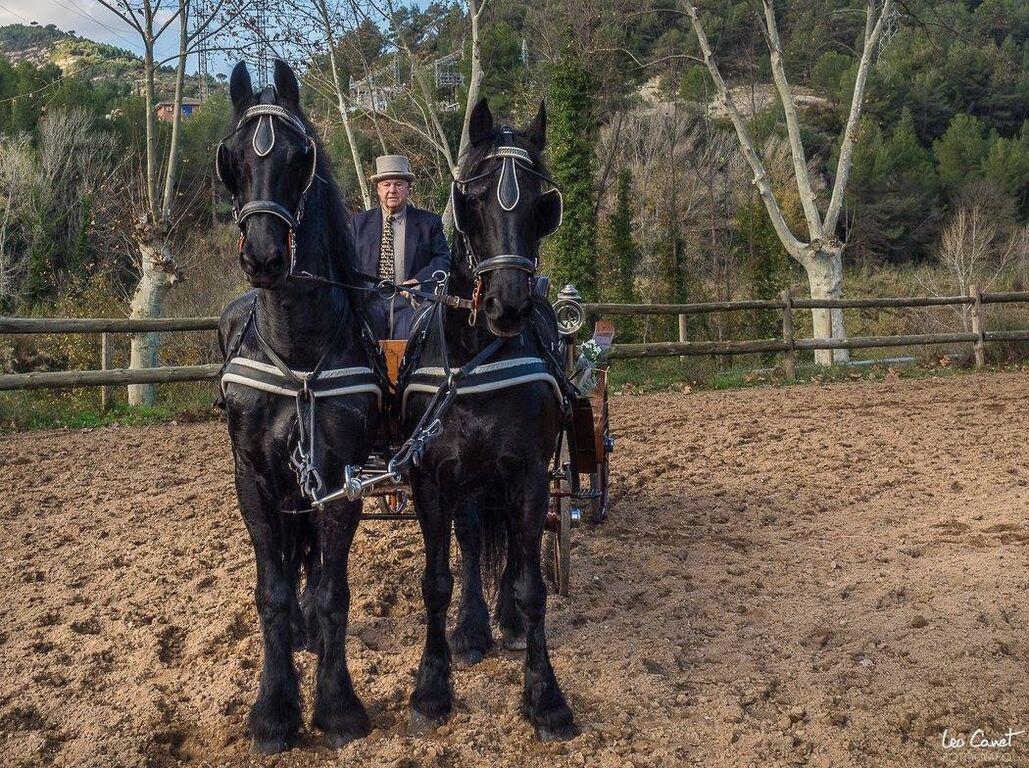 Carruatges de Cavalls Monistrol