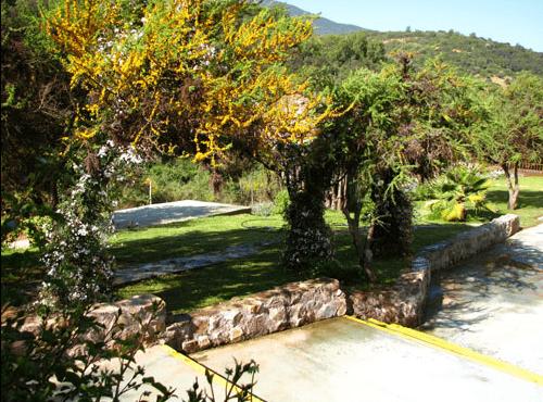 Fundo El Grillo