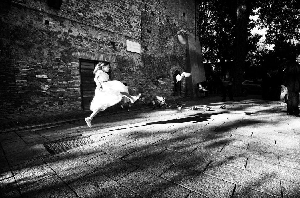 Caccia al piccione - Roma, settembre 2012